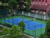 tin tuc thi cong san tennis tpq (3)
